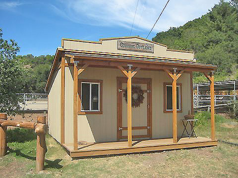 California custom sheds 10 39 wide western for Tack shed plans